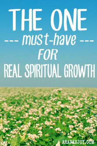 As long as our approach to living the Christian life is a stack of how-to books on the bedside table, a study of Christian should's and to-do's, we will never see the growth we are desirous of, the growth we know is possible. Grace = growth. Does your life need a new orientation -- the orientation of grace? Join me for this new series about growing in grace.