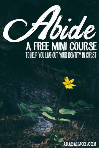 Understanding our identity in Christ is foundational to successfully living the Christian life. Get this free e-course and learn how to understand your identity, how to abide in Christ, and get tools for letting the word of Christ richly dwell in your heart and mind (Colossians 3:16).
