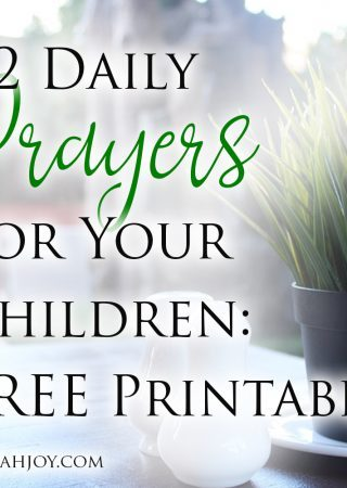 This resource shares 12 daily prayers for your children and includes a free printable. Use this to build consistency in your prayers for your kids.