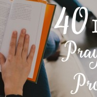 40 Promises to Trust God for  {The Trust Without Borders Experiment}