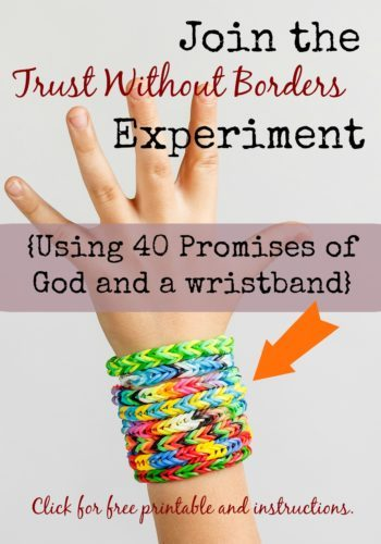 Take the Trust Without Borders Experiment and see what happens when you amen the promises of God for 40 days!