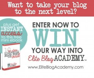 The Elite Blog Academy has changed the way I blog...and the results I've seen. Class opens April 14th and won't be offered again until 2016! Don't miss out!