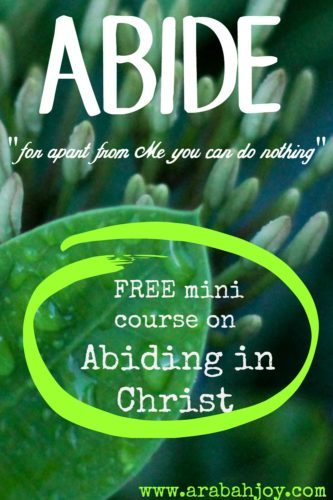 Abiding in Christ is essential to successfully living the Christian life. This FREE mini course will teach you what it means to abide in Christ and give practical tools for doing so.
