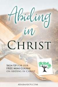 Jesus said without Him we can do nothing. Learn what it means to ABIDE in Christ with this free mini-course!