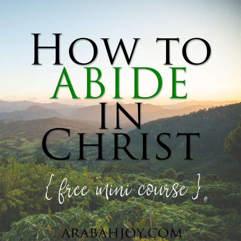 ABIDE in Christ {FREE mini-course!}