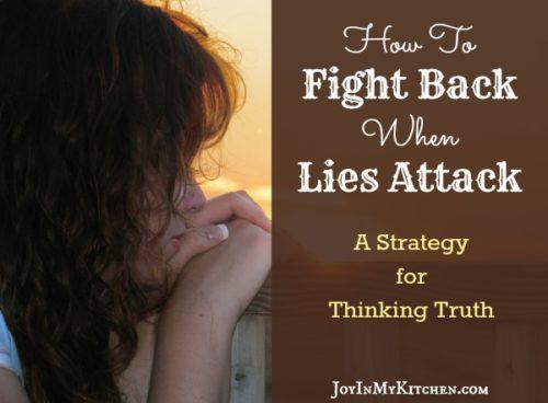 Fighting-Lies