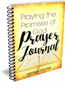 Click over to grab a copy of this prayer journal (it's free!)
