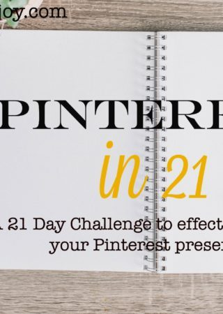 Pinterest in 21 is a 21 day challenge that will help you establish a presence on Pinterest, grow your Pinterest traffic, and reach your target audience.