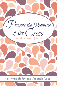 This journal will guide you through praying different promises of the gospel, such as forgiveness, adoption, righteousness, transformation, and much more. Let the gospel transform you afresh!