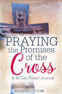 Join the 40 Day Challenge and pray one promise of God each day! See how Praying the Promises of the Cross transforms your life