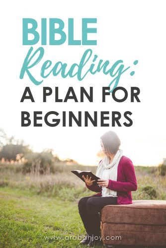 When I first started reading the Bible I had no idea where to start. The Bible is a big book! Here is an ideal Bible reading plan, especially designed for beginners.