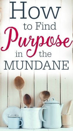 We expect purpose and direction, but how do we find purpose in the mundane? Here's encouragement for all of us!