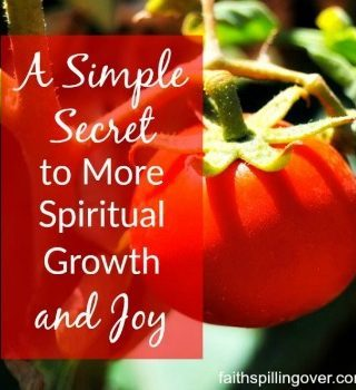 What is the key to spiritual growth? Join us for this week's Grace & Truth linkup!