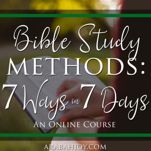 If you've ever wanted to get more from God's word or dig deep into Scriptures for yourself, Bible Study Methods: 7 Ways in 7 Days is for you!