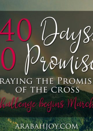 Ever wondered where to begin praying God's word? Why not start with His promises! Here's a challenge to help you start praying God's promises each day.