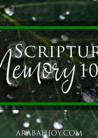 Use these practical tips to help strengthen your scripture memory.