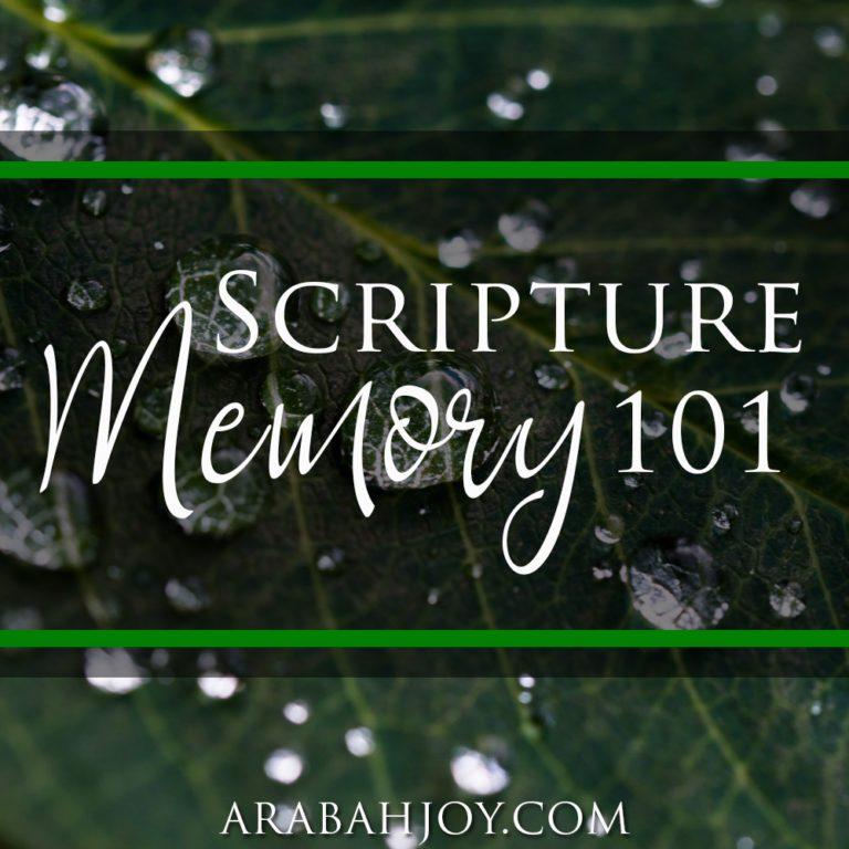 Scripture Memory 101
