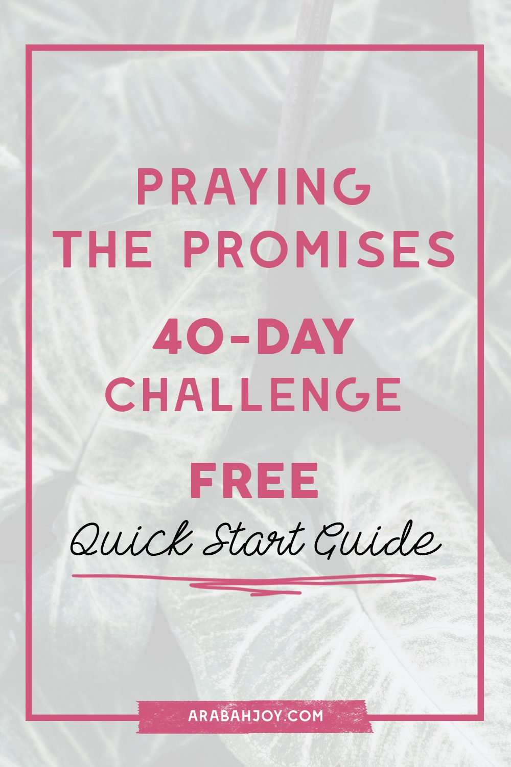 Grab this Quick Start Guide and start Praying the Promises  of God today - 40 - Day Challenge