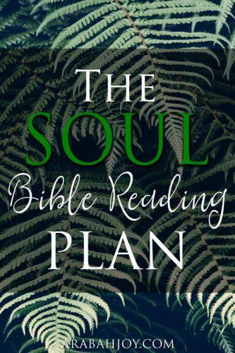 The Soul Bible Reading Plan