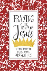 Praying the Names of Jesus Prayer Journal from Arabah Joy