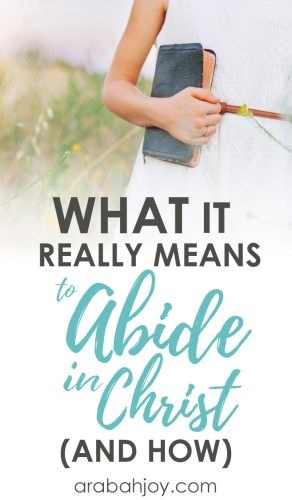 What it Really Means to Abide in Christ
