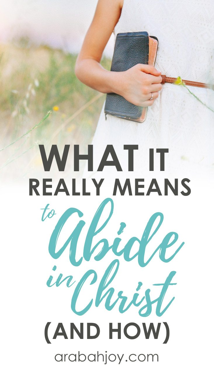 What it Really Means to Abide in Christ (and How!)