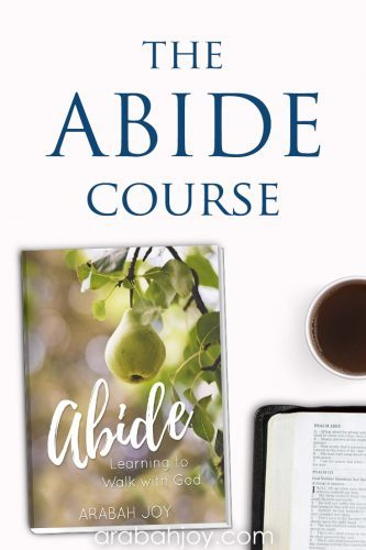 If you struggle with abiding in Christ, take our 5-day mini course and learn to deepen your intimacy with Jesus as you remain in Him. #faithbuilding #spiritualgrowth #Biblestudy