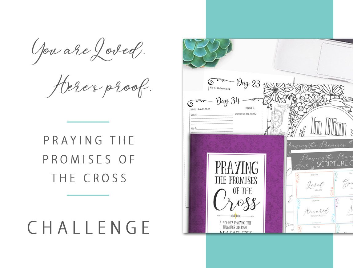 Discover God's love like never before. Join the Praying the Promises of the Cross 40 Day Prayer Challenge