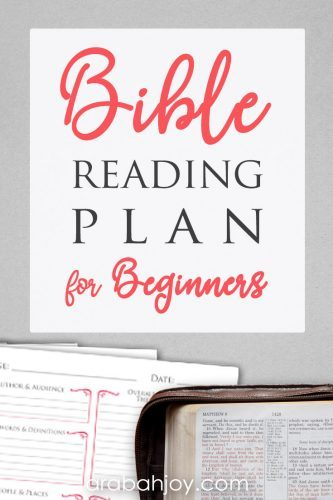 We've developed a beginner Bible study plan for beginners to help learn how to study the Bible.