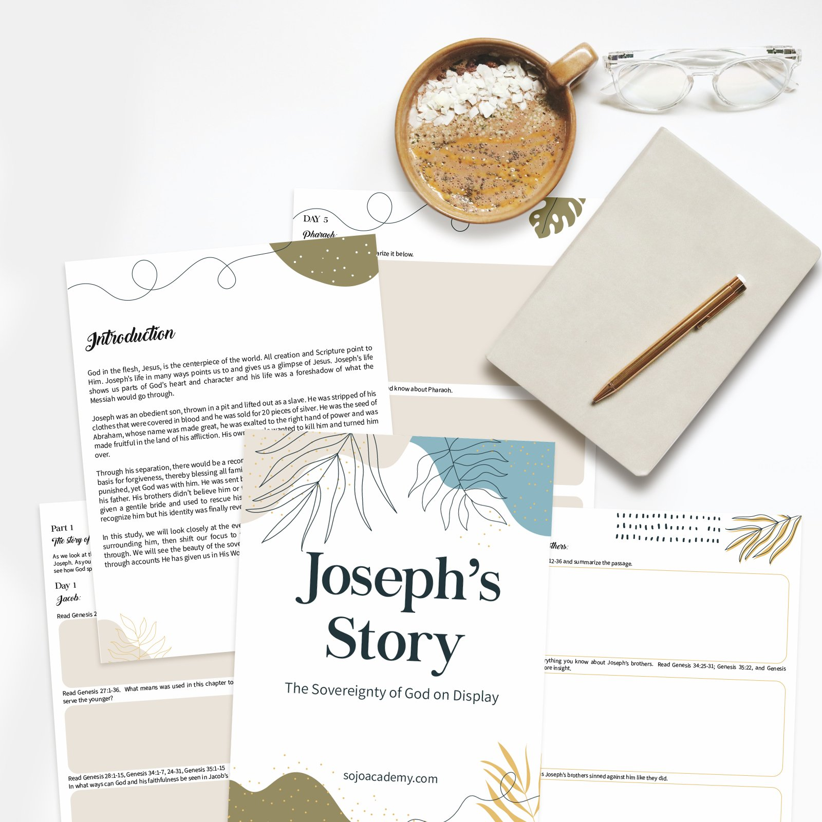 Joseph's Story The Sovereignty of God on Display